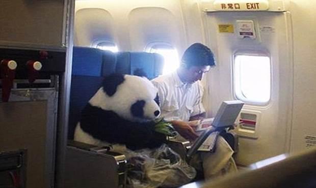 lecciones-estudiante-chino