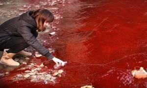 contaminacion-en-china-y-su-impacto-economico