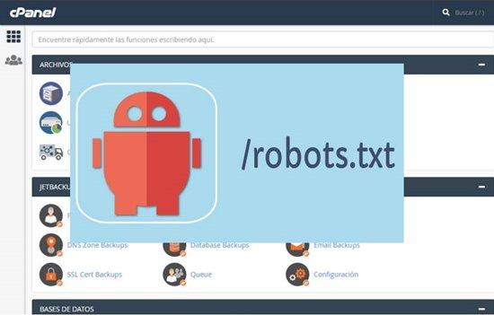 configurar archivo robots txt en wordpress